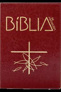 Produto Scala Editora - Livro: Bíblia de Aparecida – Letra Grande Marrom - Bíblia