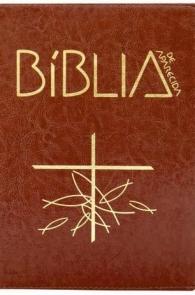 Produto Scala Editora - Livro: Bíblia de Aparecida – Média Zíper Marrom - Bíblia